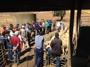 Photo: Bred Well Fed Well Workshop