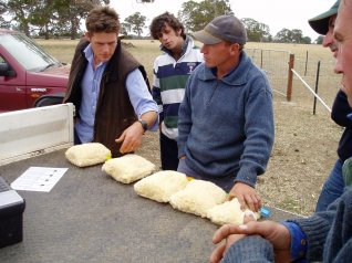 Photo: Lifetime Ewe Management training